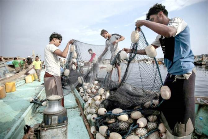 جهود إماراتية لتنشيط الصيد البحري في الساحل الغربي