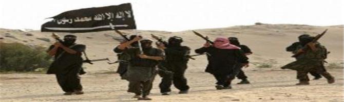 الشرعية تعين قائد جزائري ارهابي لتحشيد العناصر الارهابية وارسالهم إلى أبين